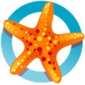 Starfish logo icon old.jpeg